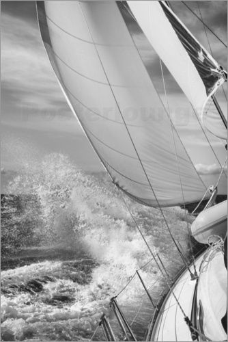 Poster sailing black white