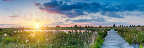Poster Sunset in the High Fens (hautes fagnes) Panorama