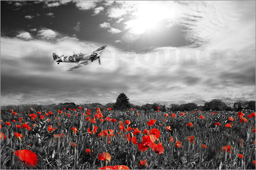 airpowerart - Spitfire Poppy Pass