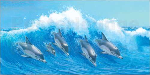 Poster Leaping Dolphins