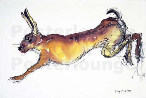 Poster Jumping Hare