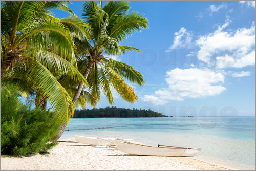 jan christopher becke beach with palm trees and turquoise ocean in tahiti poster posterlounge. Black Bedroom Furniture Sets. Home Design Ideas