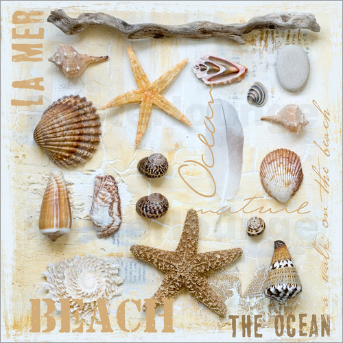 Poster Beach Treasures II