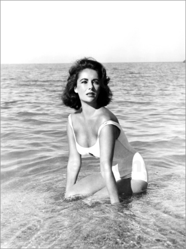 Poster SUDDENLY LAST SUMMER
