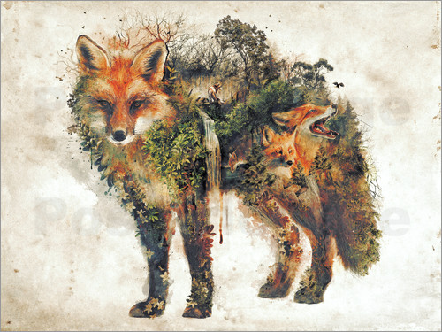 Poster Surreal Fox Nature