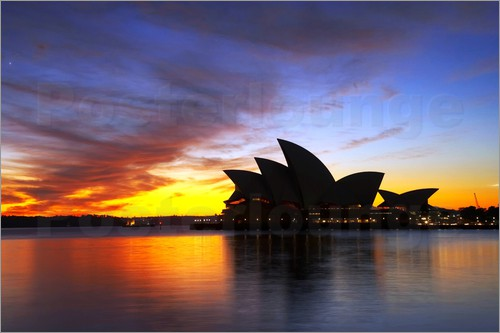 Poster Sydney Opera House at Dawn