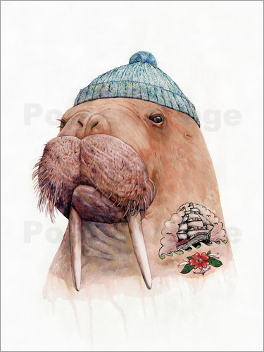 Animal Crew - Tattooed Walrus
