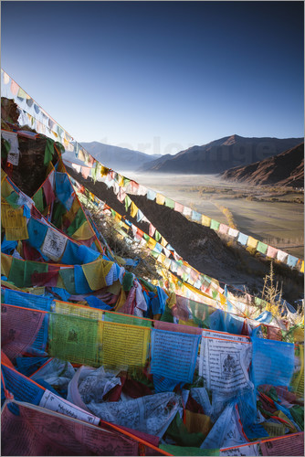 Poster Valley at sunrise with prayer flags, Tibet