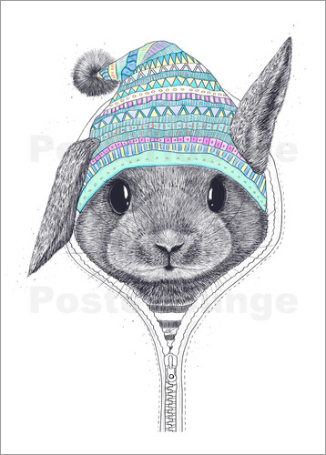 Poster The rabbit in a hood
