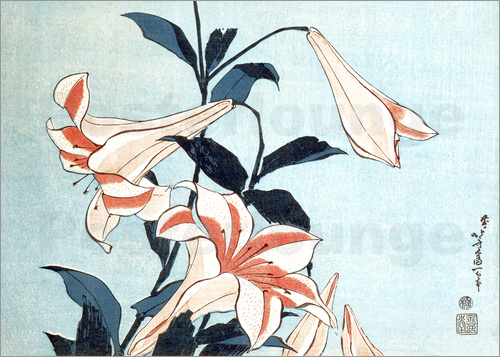 Poster Trumpet lilies