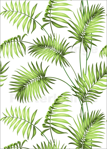 Poster Tropical forest