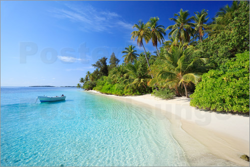 Matteo Colombo - Tropical beach with palms in the Maldives