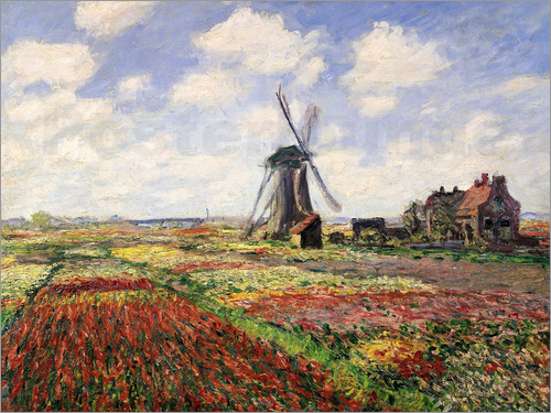 Poster Tulip Fields with the Rijnsburg Windmill