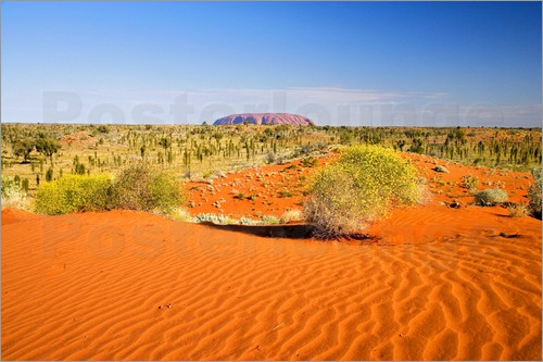 David Wall - Uluru in the distance overlooking the Outback
