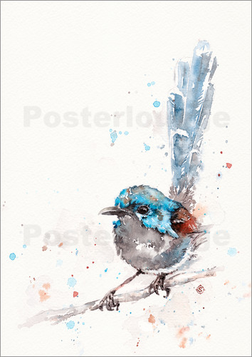 Poster Mischief In The Making (Fairy Wren)