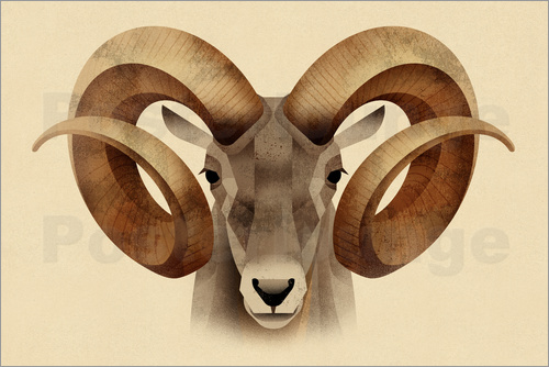 Poster Urial