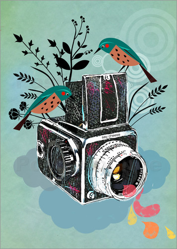 Poster Vintage Camera with Bluebirds