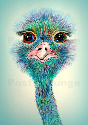 ostriches prints posters free delivery posterlounge. Black Bedroom Furniture Sets. Home Design Ideas