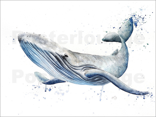 Poster whale