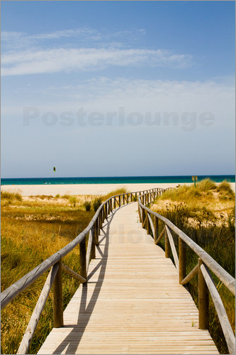 gn fotografie - walk to the beach