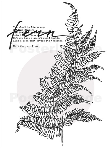 Poster Wait for your time like a Fern