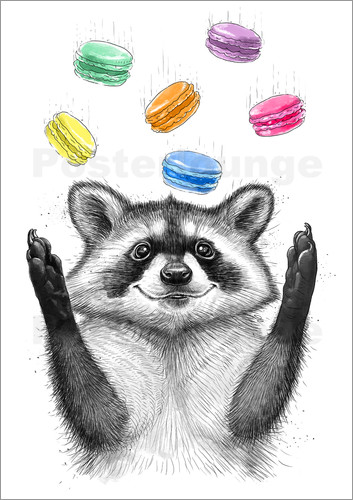 Poster Raccoon and cookies