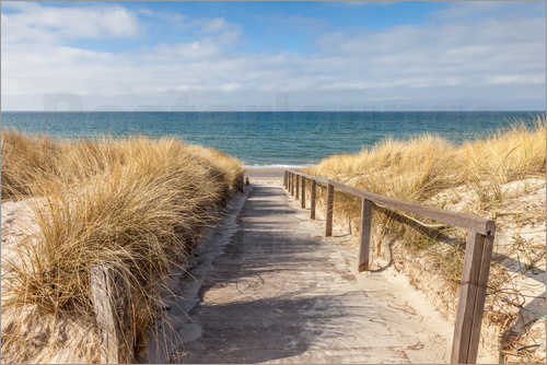 Christian Müringer - Way to the beach on the Baltic Sea