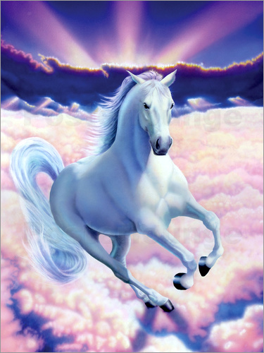 Poster White dream horse