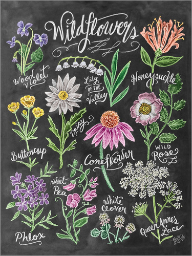 Poster Wildflowers Chalk