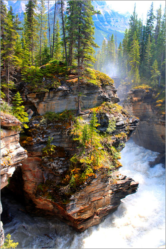 John Morris - Pure wilderness at Maligne Canyon in Jasper National Park, Canada
