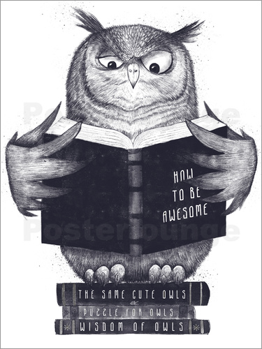 Poster Wise owl