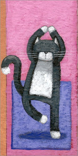 Peter Adderley - Yoga for Cats