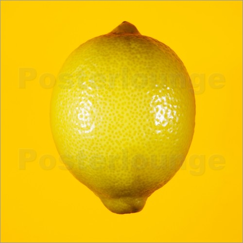Poster Lemon against yellow background