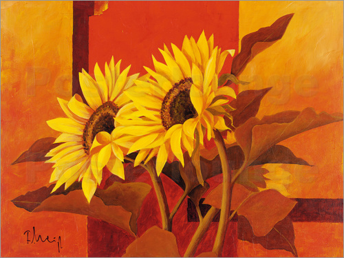 Poster Two sunflowers III