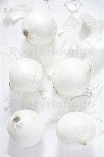 K&L Food Style - Onion still life in white