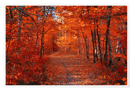 Premium poster Colorful autumn