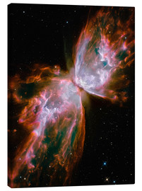 Canvas print  The Butterfly Nebula