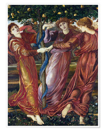 Premium poster Garden of the Hesperides