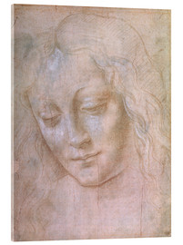 Acrylic print  Head of a woman - Leonardo da Vinci