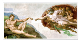 Premium poster  The Creation of Adam - Michelangelo