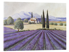 Acrylic glass  Lavender Fields - Franz Heigl