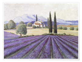 Poster  Lavender Fields - Franz Heigl
