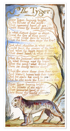 Premium poster  The Tyger - William Blake