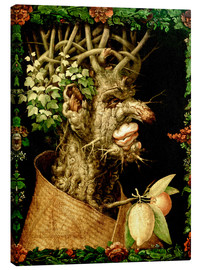 Canvas print  Winter - Giuseppe Arcimboldo