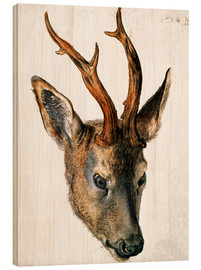 Wood print  Head of a Roe Deer - Albrecht Dürer