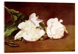 Acrylic print  Branch of White Peonies and Secateurs - Edouard Manet
