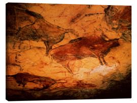 Canvas print  Bison in the cave of Altamira - Prehistoric