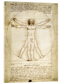 Acrylic glass  The Proportions of the human figure - Leonardo da Vinci