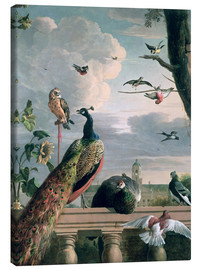 Canvas print  Palace of Amsterdam with exotic birds - Melchior de Hondecoeter