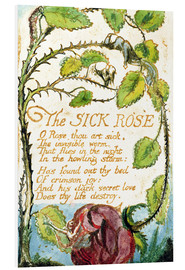 Foam board print  The Sick Rose - William Blake